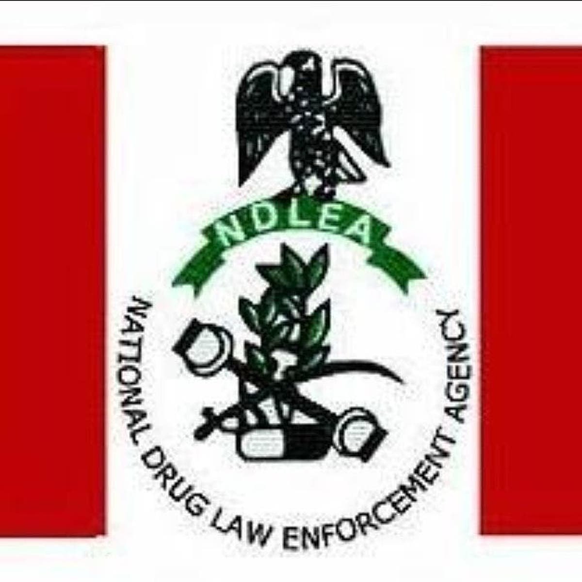 NDLEA Releases Second Batch Of Successful Candidates For Employment