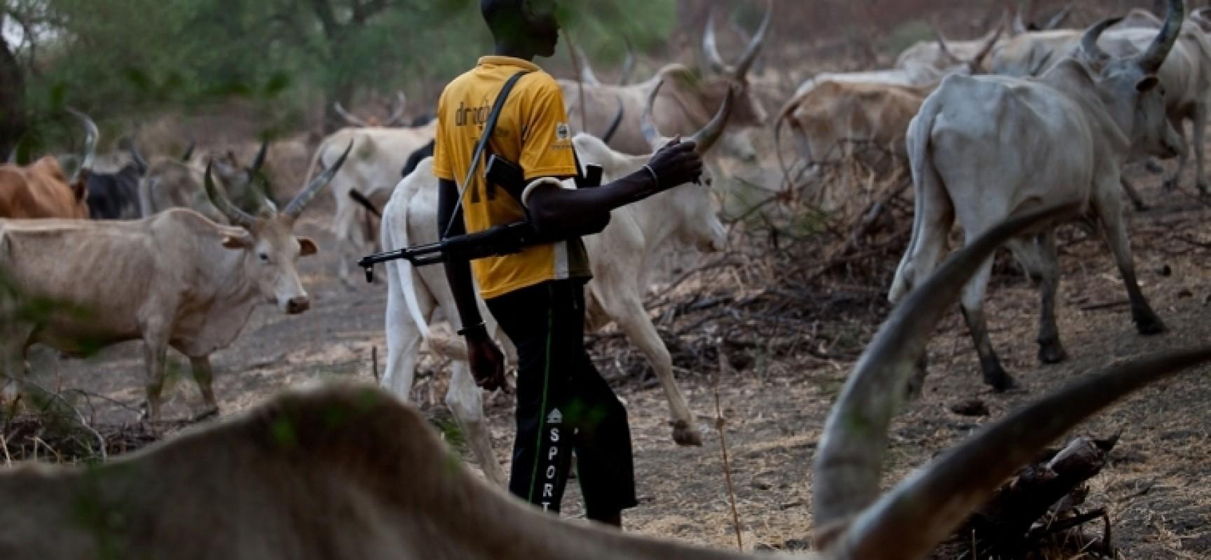 Non-enforcement Of Anti-open Grazing Laws Makes Nigeria Police More Of Fulani Police - HURIWA